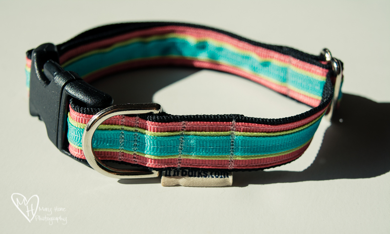 If It Barks dog collar giveaway
