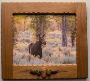 8 x 10 Custom framed photo Morning moose_