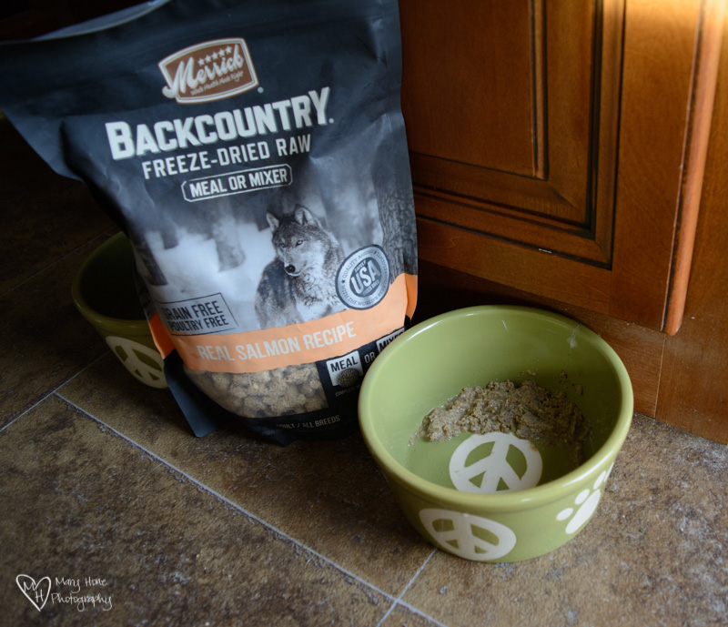 Merrick Backcountry dog food