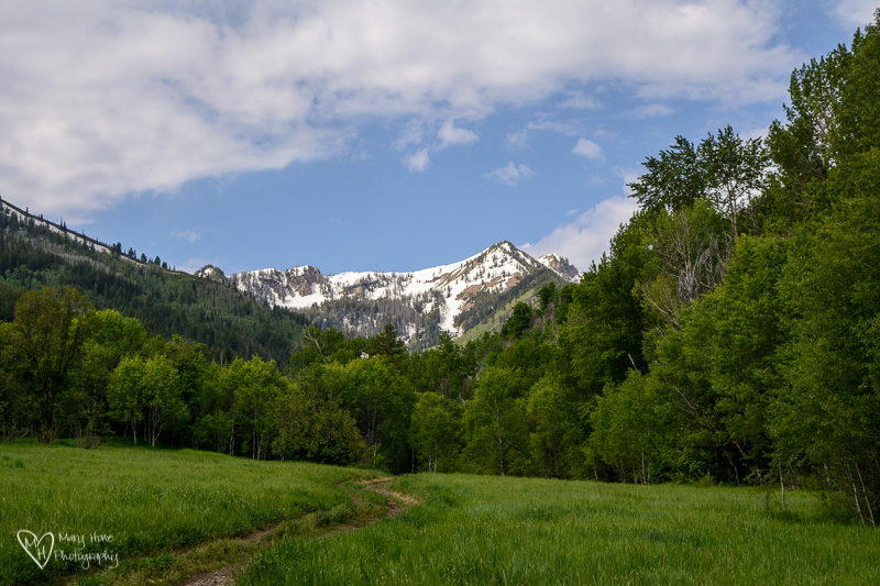 Nice Day for a Hike big springs utah
