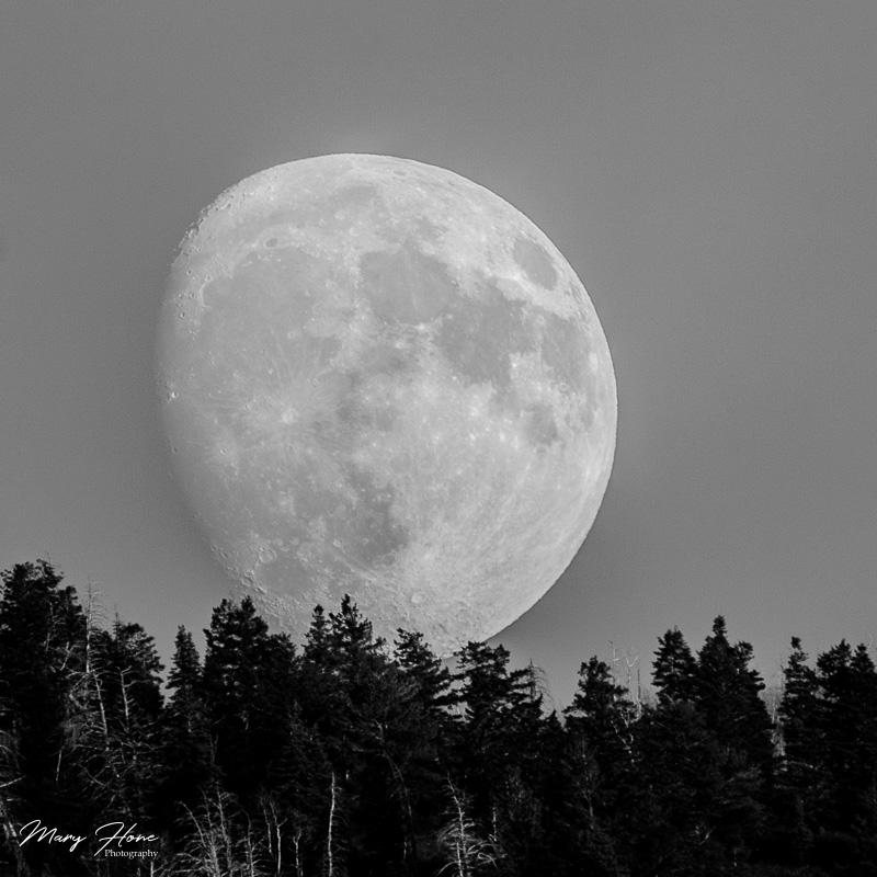 The Moon and I, full moon