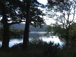 Killarney National Forest