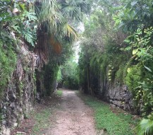 walking the railway trails