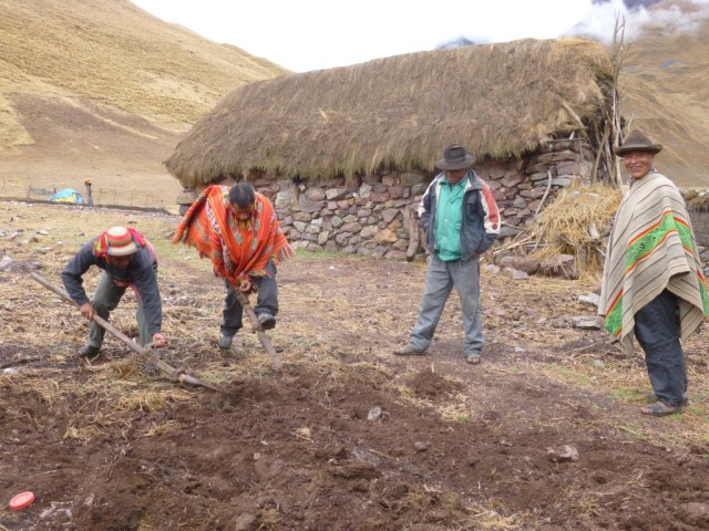 Horatio laughing at our guides' attempts to farm the land on the trek to Machu Picchu