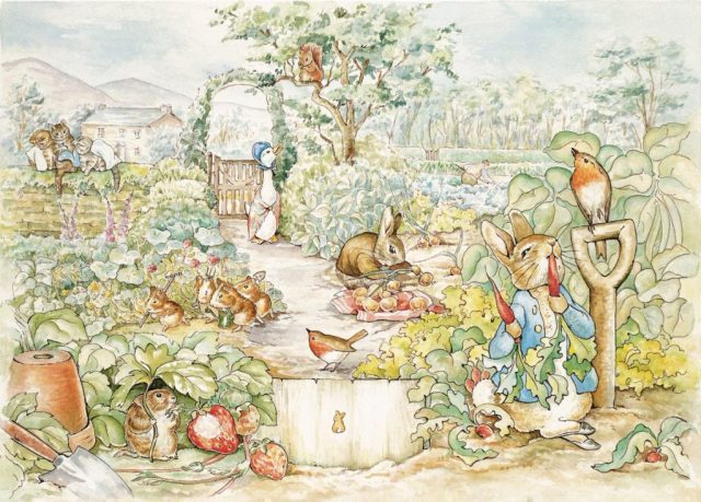 Beatrix Potter Peter Rabbit Reasons the Visit the North of England