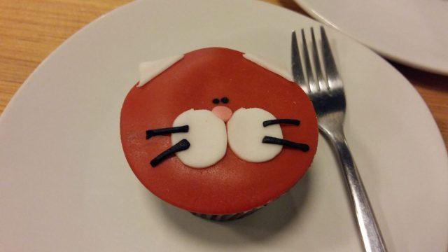 Cute Cat Muffin in La Gateria Cat Cafe in Mexico City