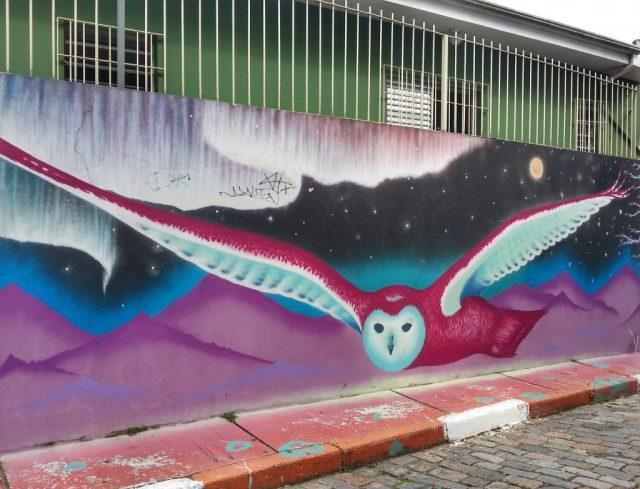 Sao paulo street art in sao paulo
