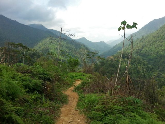 Views from the Lost City Trek to La Ciudad Perdida, Colombia