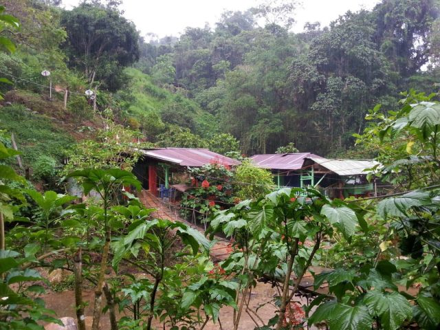 Our camp on the Lost City Trek Colombia | Trek to La Ciudad Perdida,
