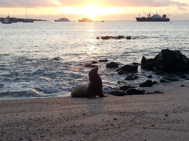 A beautiful sunset on San Cristobal - you don't get this on a Galapagos cruise!
