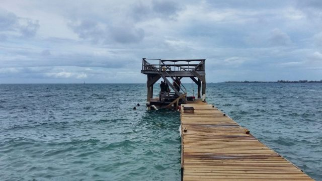 The choppy dock calmed down a lot for our first dive in Utila