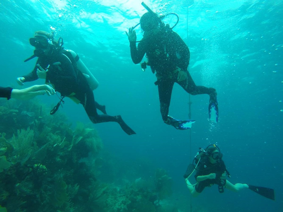 Some of our group diving in Honduras with Utila Dive Center