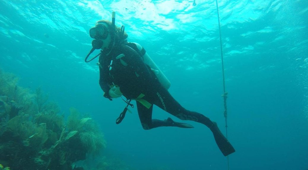 Scuba Diving in Honduras with Utila Dive Center - Tales of a Backpacker