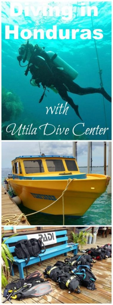 Learn more about the PADI Open water dive course with Utila Dive Center in Honduras, a great place for scuba diving lessons in Central America!