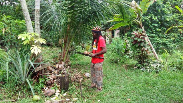 Taste Belize Food Tour - Emmeth opening coconuts