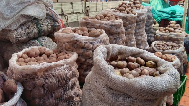 Potatoes and more potatoes in the market - part of the cooking class with 5 Bogota - what to in Bogota