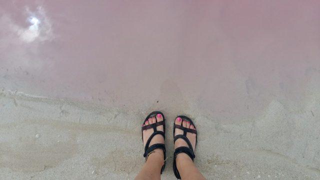 Pink toes, pink water. The pink lakes at las Coloradas - near Rio Legartos Mexico
