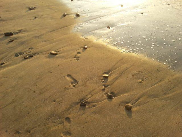 The Beach in Mancora Peru