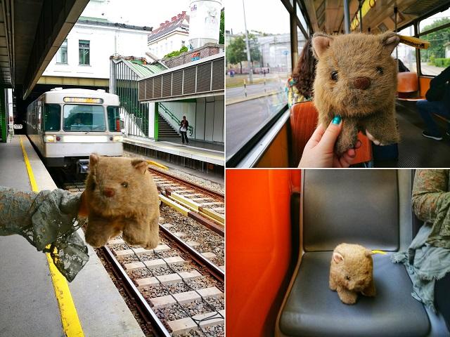 Where's Wagner Wombat - Getting Around Vienna on Public Transport