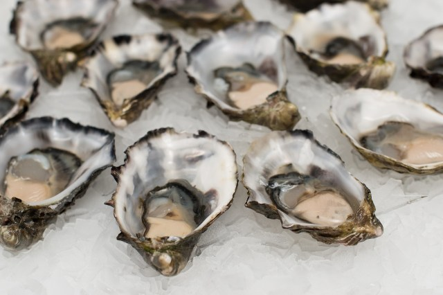 Oysters for 1 AUD at Balcony - Byron Bay Backpacking Guide