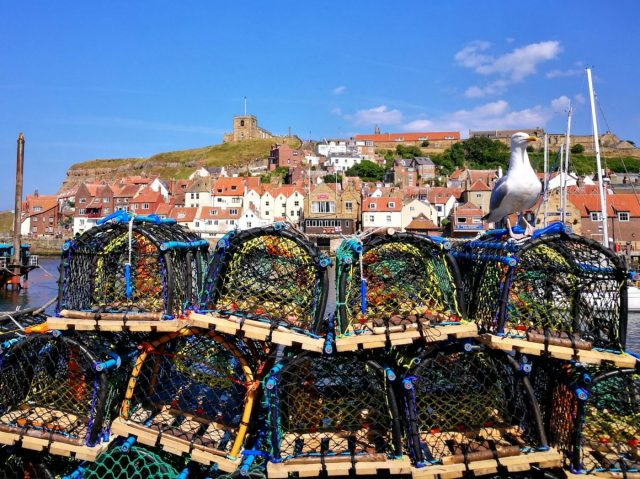 Lobster pots, a Seagull & a view of Whitby Abbey across the water