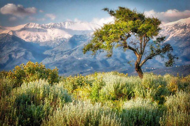Crete - The Best Walking Holidays in Europe