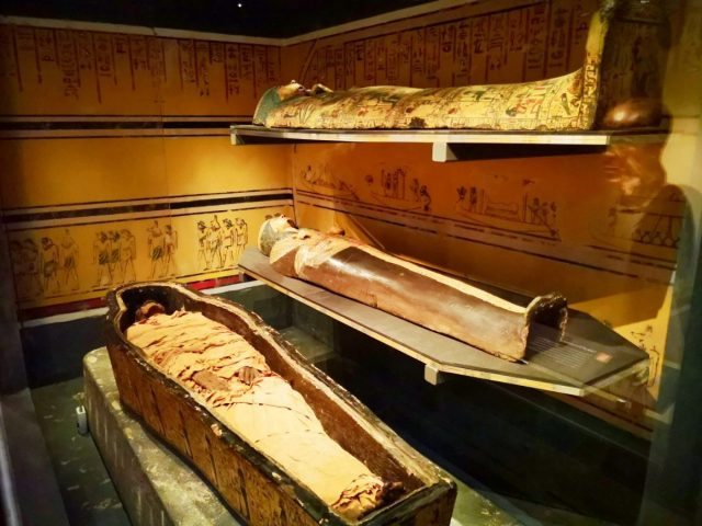 The 'Leeds Mummy' Nesyamun at Leeds City Museum - Free Museums in Leeds