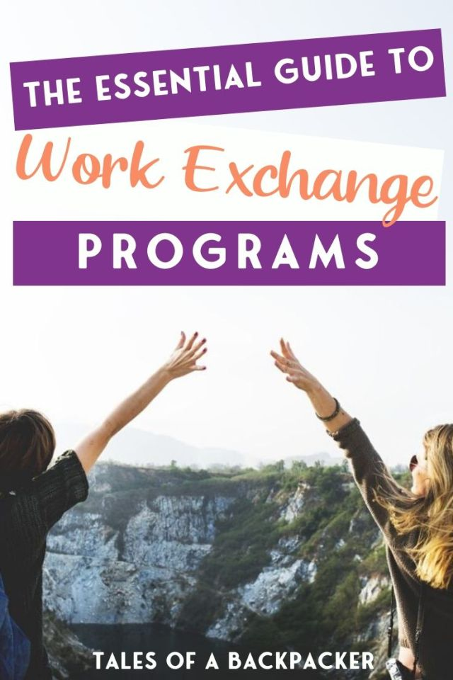 the Essential Guide to Work Exchange Programs Pin