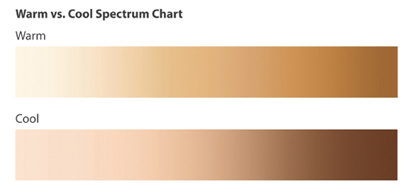 Image result for foundation colour spectrum