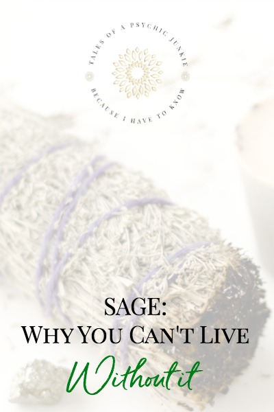 SAGE: Why You Can't Live Without It