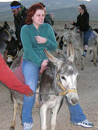 israel-donkey-face