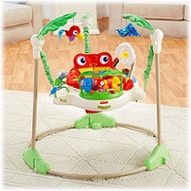 Picture of the Fisher-Price Rainforest Jumperoo for TalesofTwoChildren.com