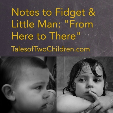 Notes to Fidget & Little Man: From Here to There