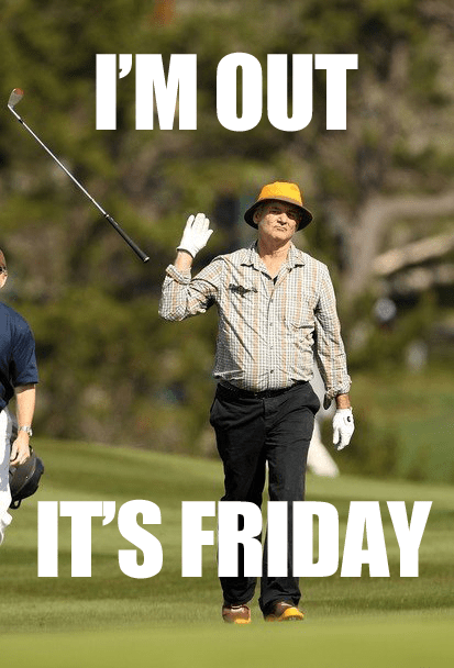 Friday memes, Almost friday and Silky terrier on Pinterest