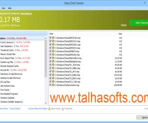 Glary Disk Cleaner 5.0.1.206 Full Version !