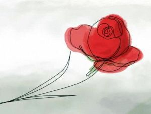 saint george rose