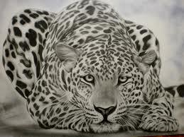 guepard tótem