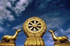 rueda del karma, símbolo en templo budista