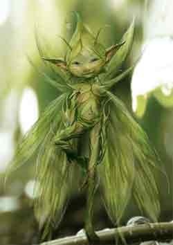 sifo mágico verde