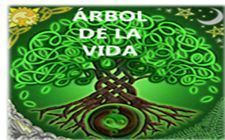 árbol-celta-imagen-destacad