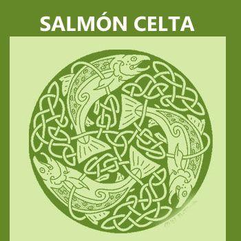 símbolos celtas: el salmón