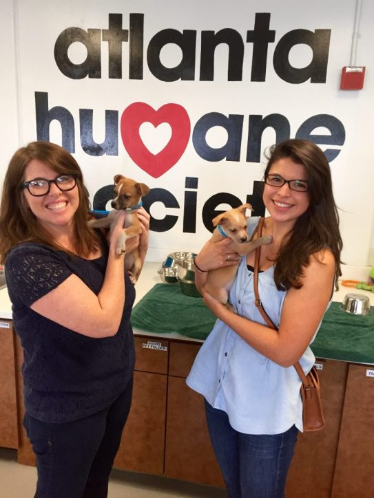 Ticket Alternative Donates to Atlanta Humane Society