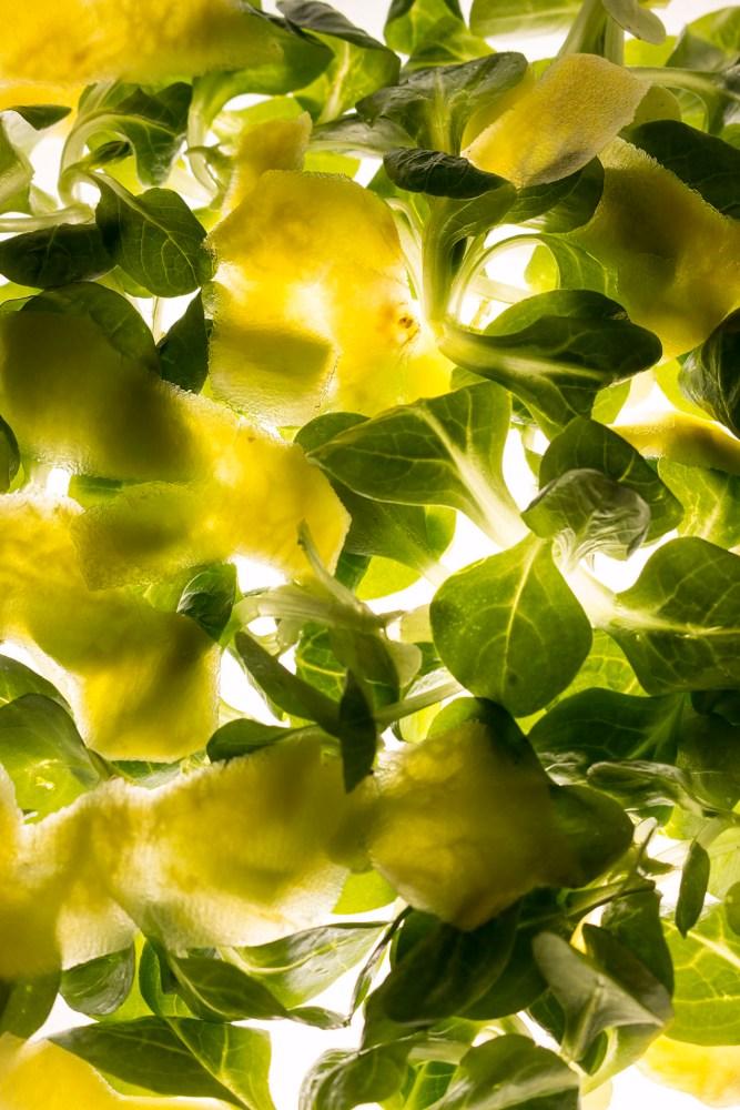 Feldsalat und Gelbe Bete