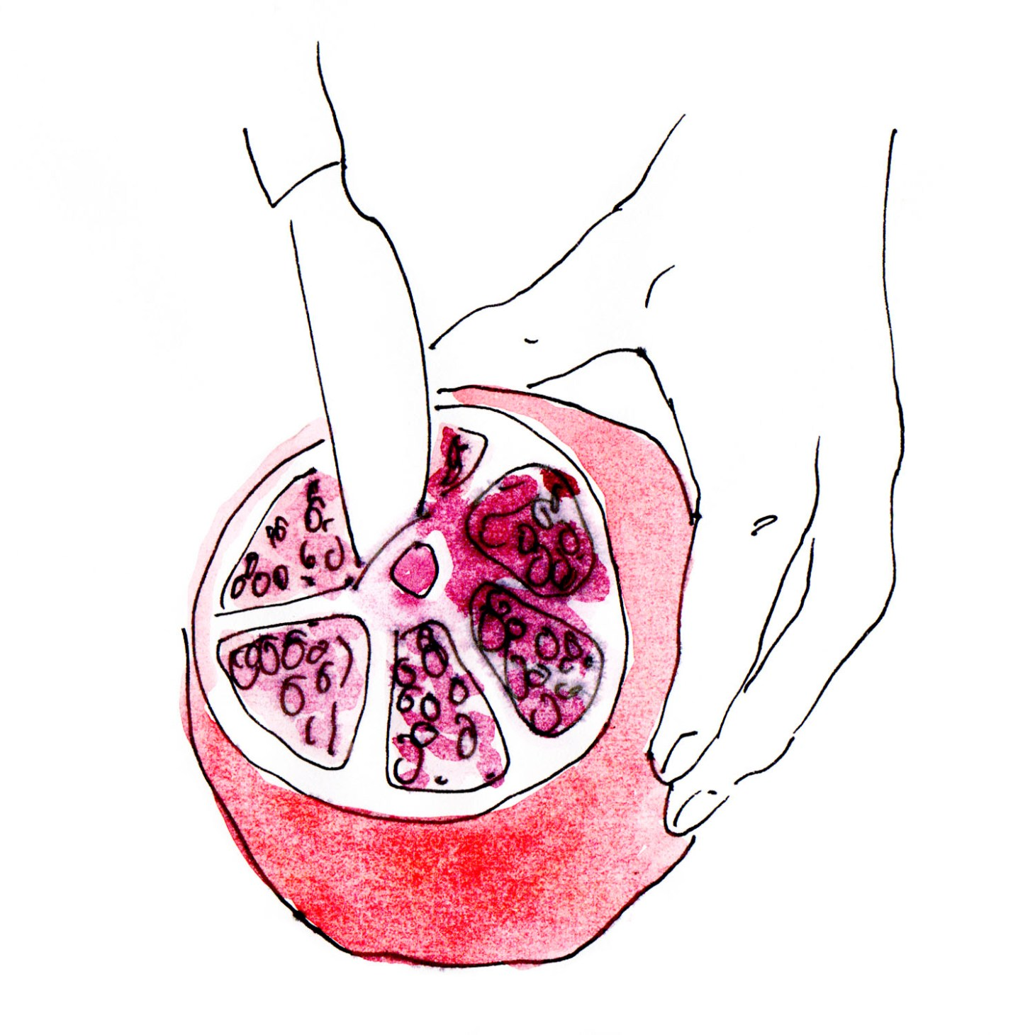 Granatapfel öffnen 3
