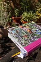 Kostbare Kräuterblüten Buch