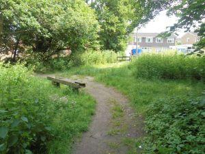 alcott park 2