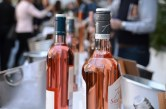 Provence Rosé in the tasting 1