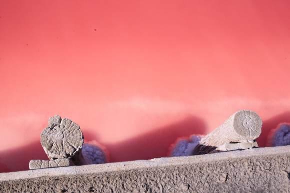 pink salt lakes, Flamingos and pink salt lakes, nature at its blush best