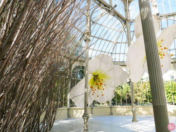 giant flower carpet, Madrid's Retiro Park stuns with giant flower installation