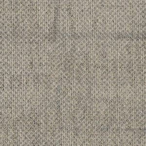 ReForm Transition Seed light grey 5595